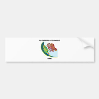 Intracellular Housecleaning Inside Endomembrane Bumper Sticker