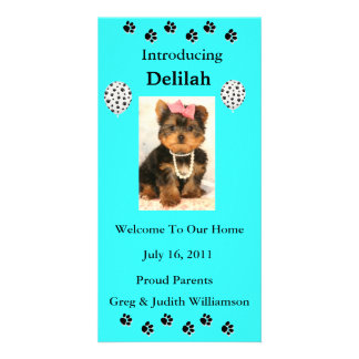 Introduce Your Adopted Pet Photo Card