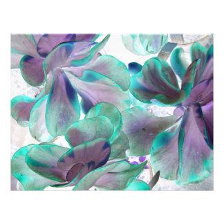 invert teal blue succulent flapjack plant full color flyer