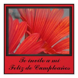 """Invitación - Feliz Cumpleaños - Orange Daisies 5.25"""" Square Invitation Card"""