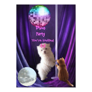 Invitation Disco Party Dog Cat Maltese Puppy