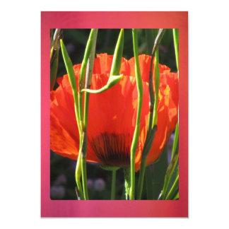 Invitation - Flower - Corn Poppy