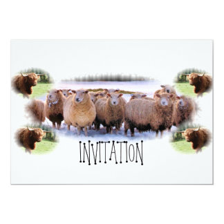 Invitation for BBQ or Dinner Party