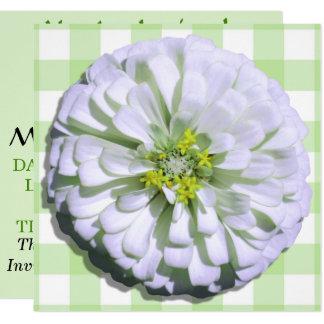 Invitation - Lemony White Zinnia
