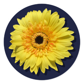 Invitation - Lemorange Lollipop Daisy