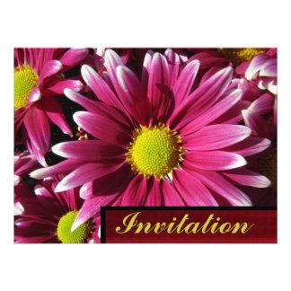 Invitation - Red Daisy Flowers