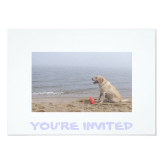 Invitation with Labrador photo