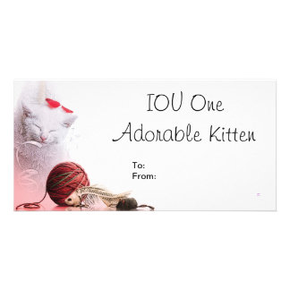 IOU One Adorable Kitten Customised Photo Card