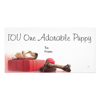 IOU One Adorable Puppy Photo Greeting Card