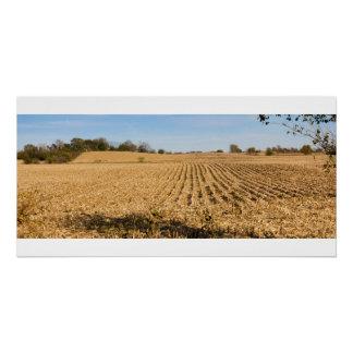 Iowa Cornfield Panorama Photo Poster