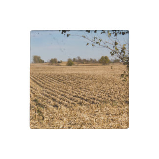 Iowa Cornfield Panorama Photo Stone Magnet