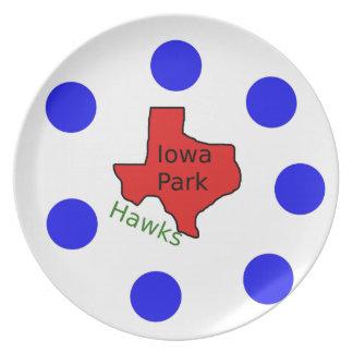 Iowa Park, Texas Design (Hawks Text Included) Plate