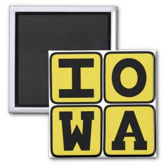 IOWA State Iowan Hawkeye Des Moines Cedar Rapids Magnet