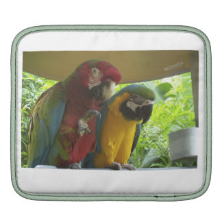 iPad case for bird lovers iPad Sleeves