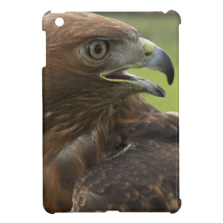 IPAD CASE W/ PHOTOGRAPH OF FEMALE RED TAILED HAWK