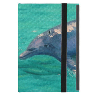 Ipad Dolphin Case