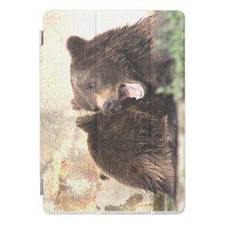 iPad Pro Cover - Original Photography - Bears