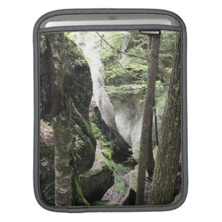 iPad sleeve with beautiful picture of the woods