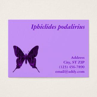 Iphiclides podalirius Profile Card