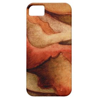 iphone4- Sonoran Desert Sunset iPhone 5 Case