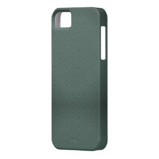 iphone5/5s case