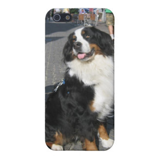 iPhone5 Case: Berner, Fussen Bavaria iPhone 5 Case