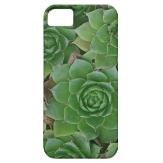 iphone5 case with housekeeper plant