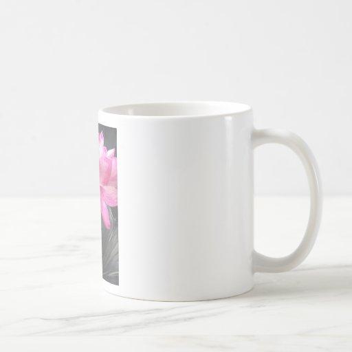 Iphone/2G/3G/4G skin Coffee Mug
