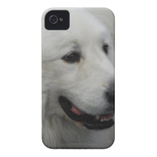 iphone 4 barely there QPC template Ca - Customized Case-Mate iPhone 4 Cases