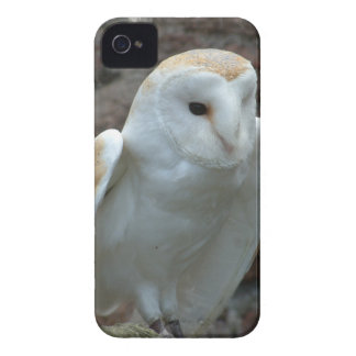 iphone 4 barely there QPC template Ca - Customized iPhone 4 Case