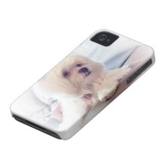 iPhone 4 case - Photo