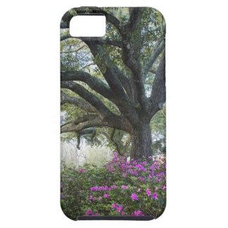 iPhone 5/5s Oaks & Azaleas Cell Case