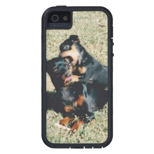 iPhone 5/5S, Tough Xtreme image pups iPhone 5 Case
