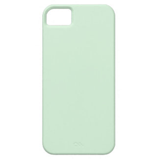 iPhone 5 case Mint Green