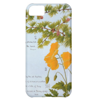 iPhone 5 Case Nature Journal Flora and Fauna 1