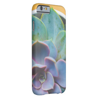 iPhone 6/6s, Barely There - succulent Barely There iPhone 6 Case