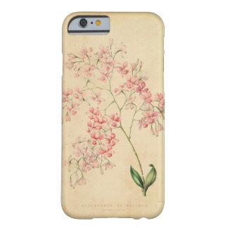 iPhone 6 case - vintage orchid illustration