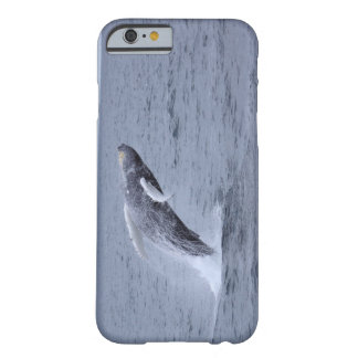 iPhone 6 Humpback Whale breaching Barely There iPhone 6 Case