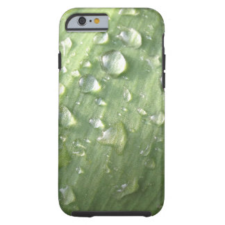 iPhone 6 Morning Dew Case, Tough Tough iPhone 6 Case