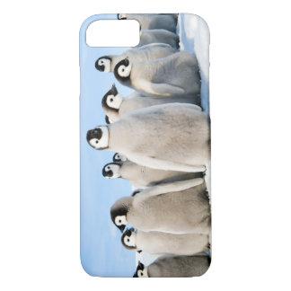 iPhone 7 Penguin Chicks iPhone 7 Case