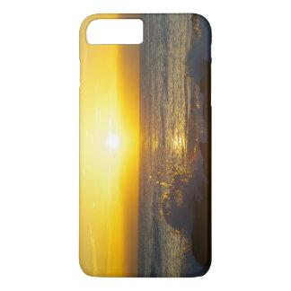 iPhone 7 Plus, Barely There Sunrise Image iPhone 7 Plus Case