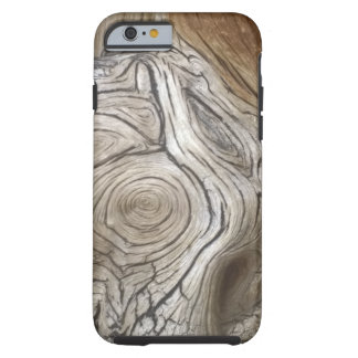 iPhone Case - detailed tree