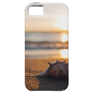 iphone Cover Sea Shell