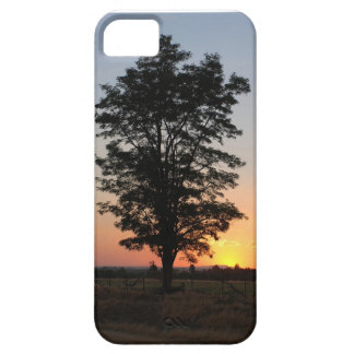iphone cover with sunset and tree iPhone 5 case