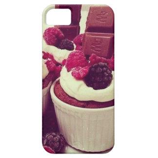Iphone S/S5 case