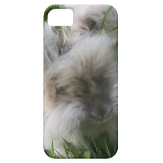 iPhone SE + iPhone 5/5S Case - English Angora