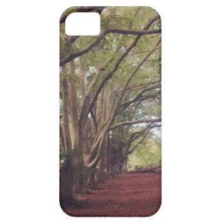 iPhone SE + iPhone 5/5S, Woods. iPhone 5 Case