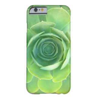 iphone six succulent case