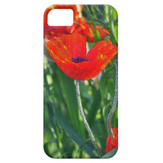 iphone skin of a poppy flower iPhone 5 cover