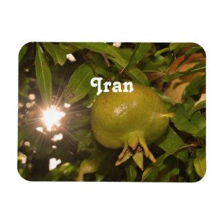 Iran Pomegranate Magnets